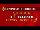 ГНОМЫ В ПОДДЕРЖКУ КАТРИН ДЕНЁВ Прямая трансляция GNOMLANDIA TV