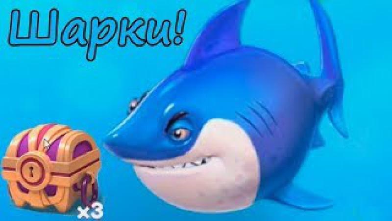 Купили новую рыбку Акулу Шарки за 200 000 и открываем Сундуки Fish Новая ио игра п