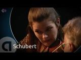 Schubert Pianotrio in Bes-groot, D 898 - Janine Jansen &amp Friends - Kamermuziek Festival 2011