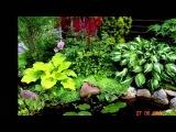 Сад своими руками 2013 Слайд-шоу фото с музыкой