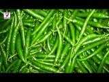 हरी मिर्च के बेहतरीन फायदे - Hari mirch ke fayde | Health Care Hindi