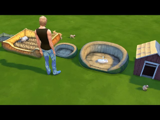 The Sims 4 | Functional Large\Small Bed and House - Cats and Dog