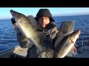 ПОПАЛИ НА ЖОР ТРОФЕЙНОГО СУДАКА ЗИМОЙ Зимний спиннинг Рыбалка от Михалыча