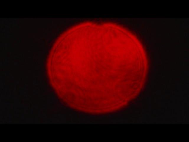 Круглое отверстие, дифракция Френеля