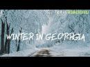 Winter in Georgia Sabaduri Forest 4k Miridianprod
