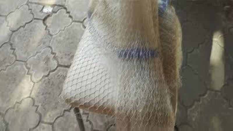 какой использую узлел для кастинговой сети и просто для плетения сети