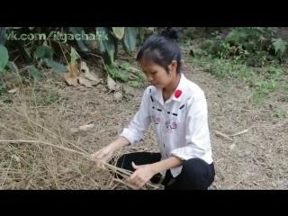 Китайские влогеры из деревни