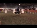 Mark Todd riding a pony