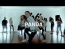 PANDA | CHOREO | MAFIACENTER | SEVA EDEM