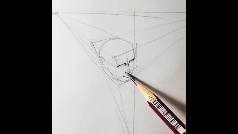 Stady ART