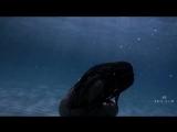 Hakan Akkus - I Cant Be (Original Mix)(Video Edit) + Lyrics - YouTube