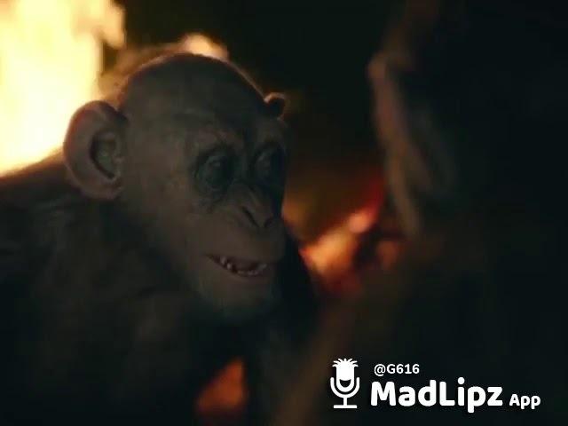 8 марта скоро прикол с планеты обезьян