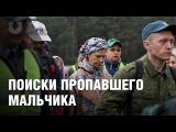 В Беловежской пуще продолжают искать пропавшего мальчика