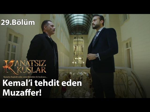 Kemal'i tehdit eden Muzaffer! - Kanatsız Kuşlar 29.Bölüm