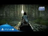 Новый геймплейный трейлер ремейка Shadow of the Colossus