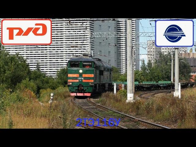 Тепловоз 2ТЭ116К 1081 с грузовым поездом и с приветливым помощником