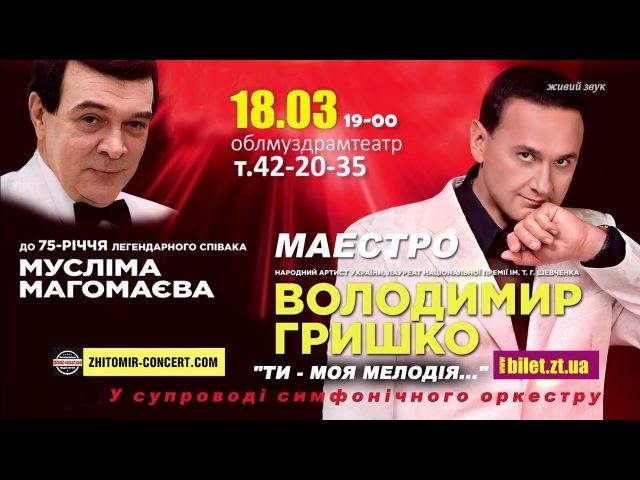 Владимир Гришко 18 03 2018 в Житомире