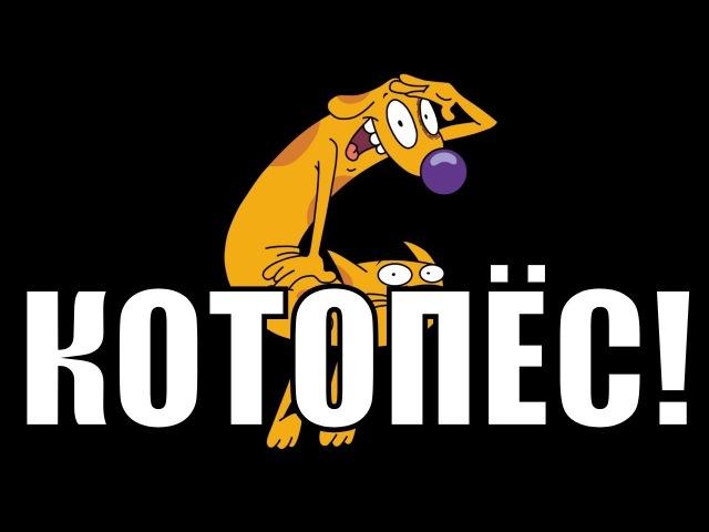 CATDOG / КОТОПЁС (guitar, vocal and harmonica cover)