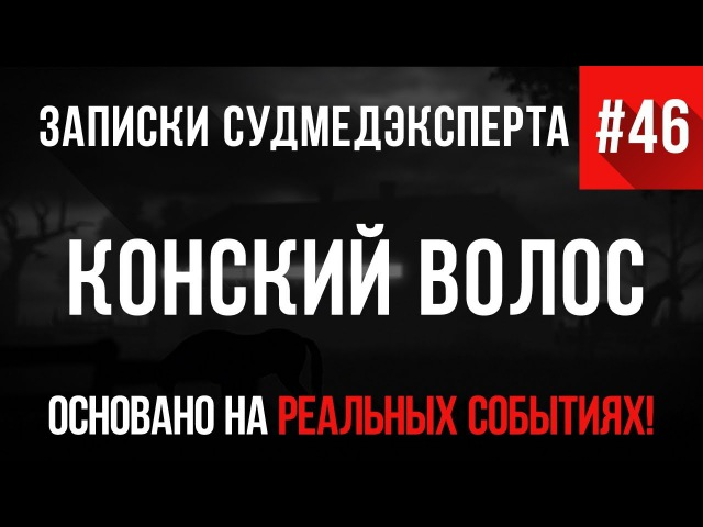 Записки Судмедэксперта 46 Конский Волос (Страшная История на Реальных Событиях)