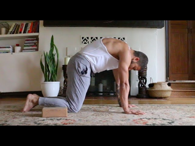 Yoga Asana For Beginners - Day 1 - Shoulders and Wrists - YouTube
