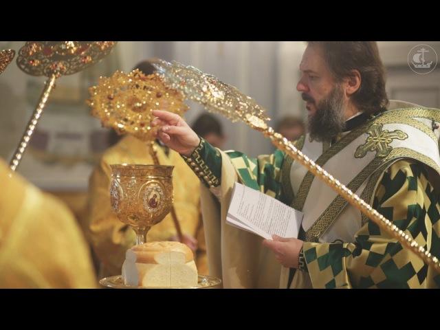 Божественная литургия апостола Иакова 2017 / The Divine Liturgy of St. James the Apostle 2017