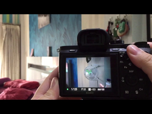 Sony A7II with Viltrox EF to NEX III Auto focus speed test