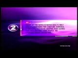 TV2 ADALT AUDEANCE 2004