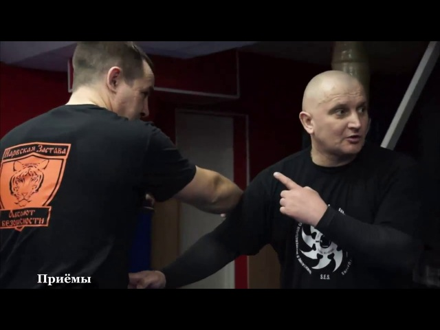 ☆ self defense☆ семинар для ЧОП