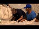 Открытие древне римской мозаики в городе Лод