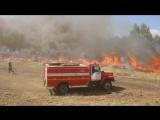 """Операция по """"тушению лесного пожара"""" в Саратовской области"""