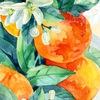 Студия скрапбукинга Апельсиновое дерево