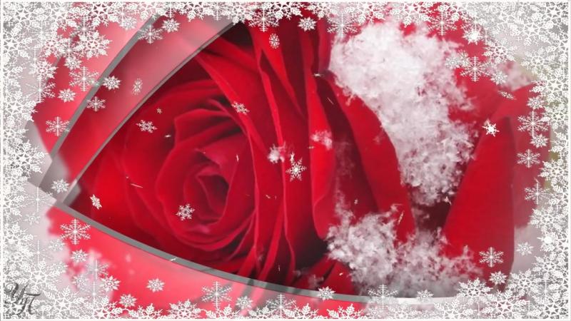 С Днем рождения в декабре Красивое поздравление Видео открытка