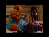 Alf Quote Season 2  Episode  23_Я забочусь