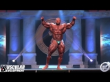 2018 ARNOLD CLASSIC - ROUTINE - ROELLY WINKLAAR
