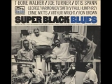 T-Bone Walker, Big Joe Turner, Otis Spann , George Harmonica Smith - Paris Blus