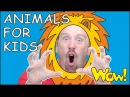 Animals for Kids and Mr. Sun NEW Story from Steve and Maggie for Children | Wow English TV