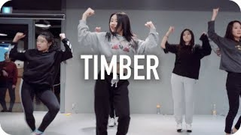 Timber Pitbull ft Ke$ha Beginner's Class