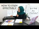 HOW TO STUDY EFFECTIVELY: Tips Tricks from Med School