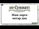 10 Маж ларга мегар дац Iадлан