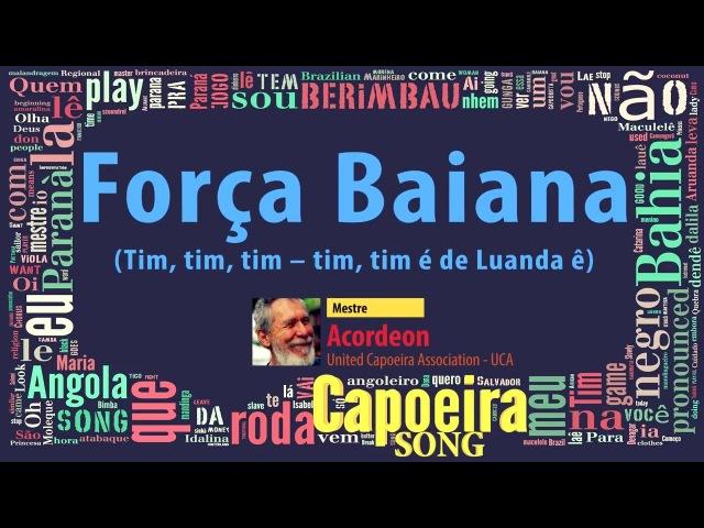 Mestre Acordeón (United Capoeira Association - UCA) - Força Baiana
