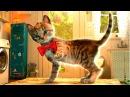 Мой МАЛЕНЬКИЙ МИЛЫЙ КОТЕНОК Мультики для детей про котят Игры для малышей СИМУЛ