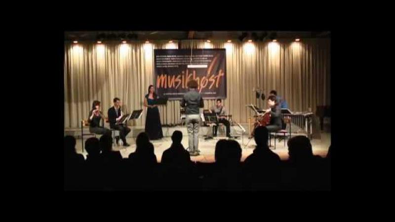 Nadar Ensemble plays