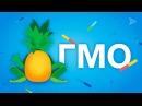 Что будет, если есть ГМО?