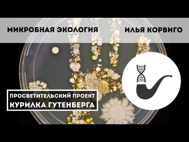 Микробная экология – Илья Корвиго