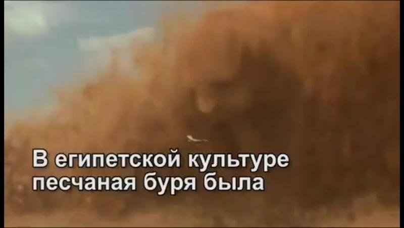 Омск любимый город