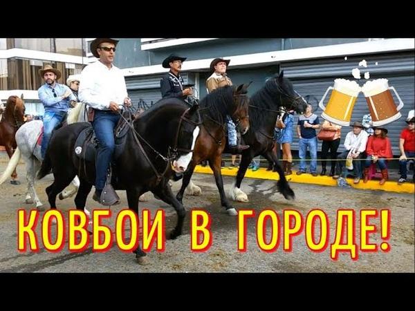 Парад лошадей в КОСТА РИКЕ / Конное шествие КОСТА-РИКА