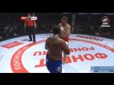 Тони Джонсон vs Виталий Минаков - Tony Johnson  vs Vitaly Minakov