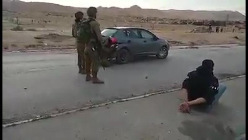 Les forces d'occupation israéliennes ont arrêté ce jeune palestinien à l'entrée du sud de Jéricho pour leur servir lui et sa voi