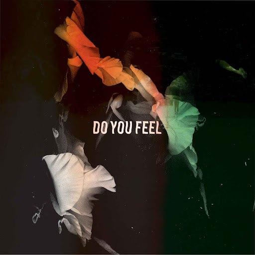 Bearcubs альбом Do You Feel