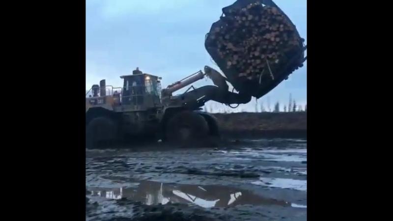 Неплохая скорость)